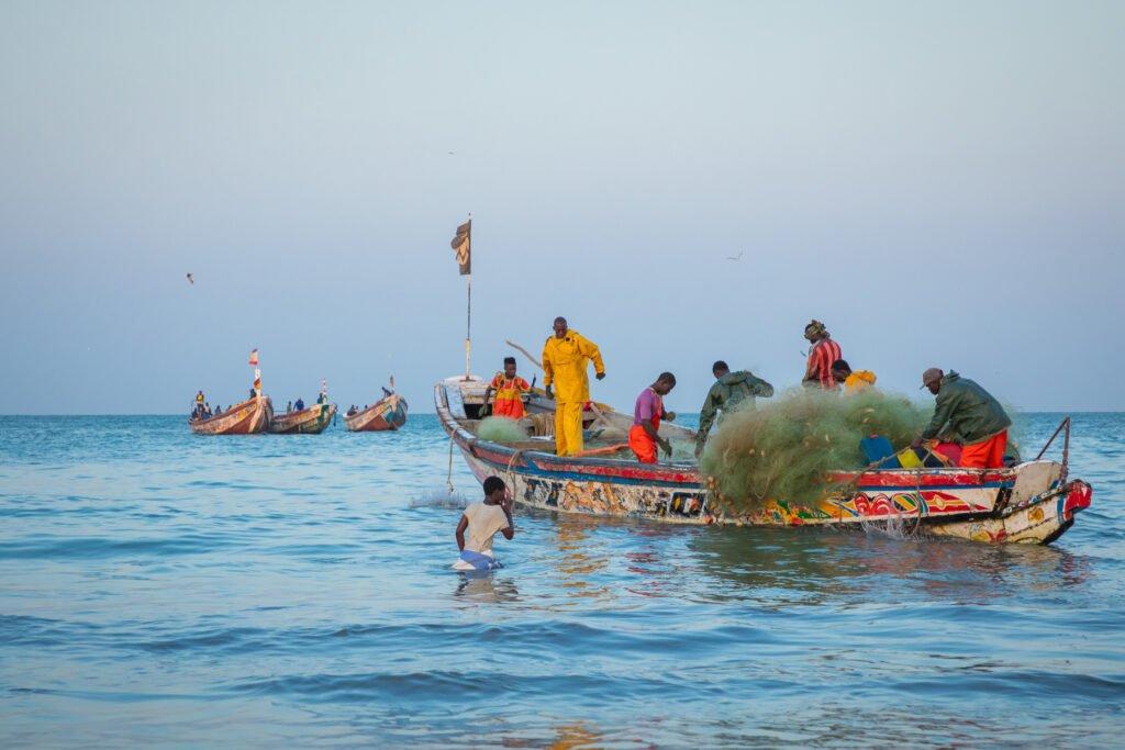 Jokin haisee Gambian kalastusteollisuudessa